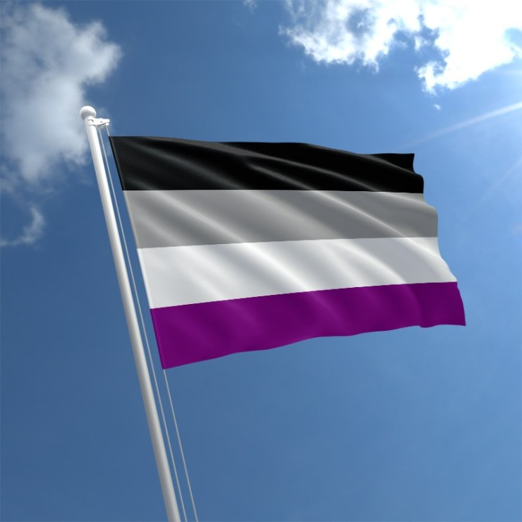 asexual-flag-std