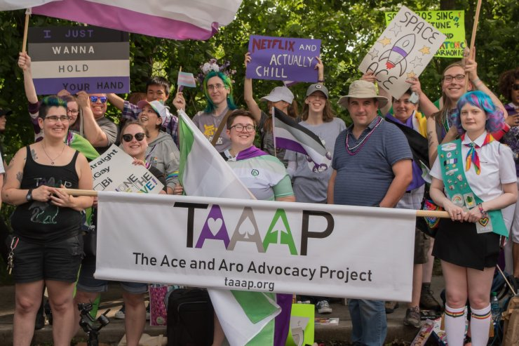 """A group of 15 people pose with a variety of flags and signs behind a banner that has the TAAAP logo and the words """"The Ace and Aro Advocacy Project, taaap.org"""""""