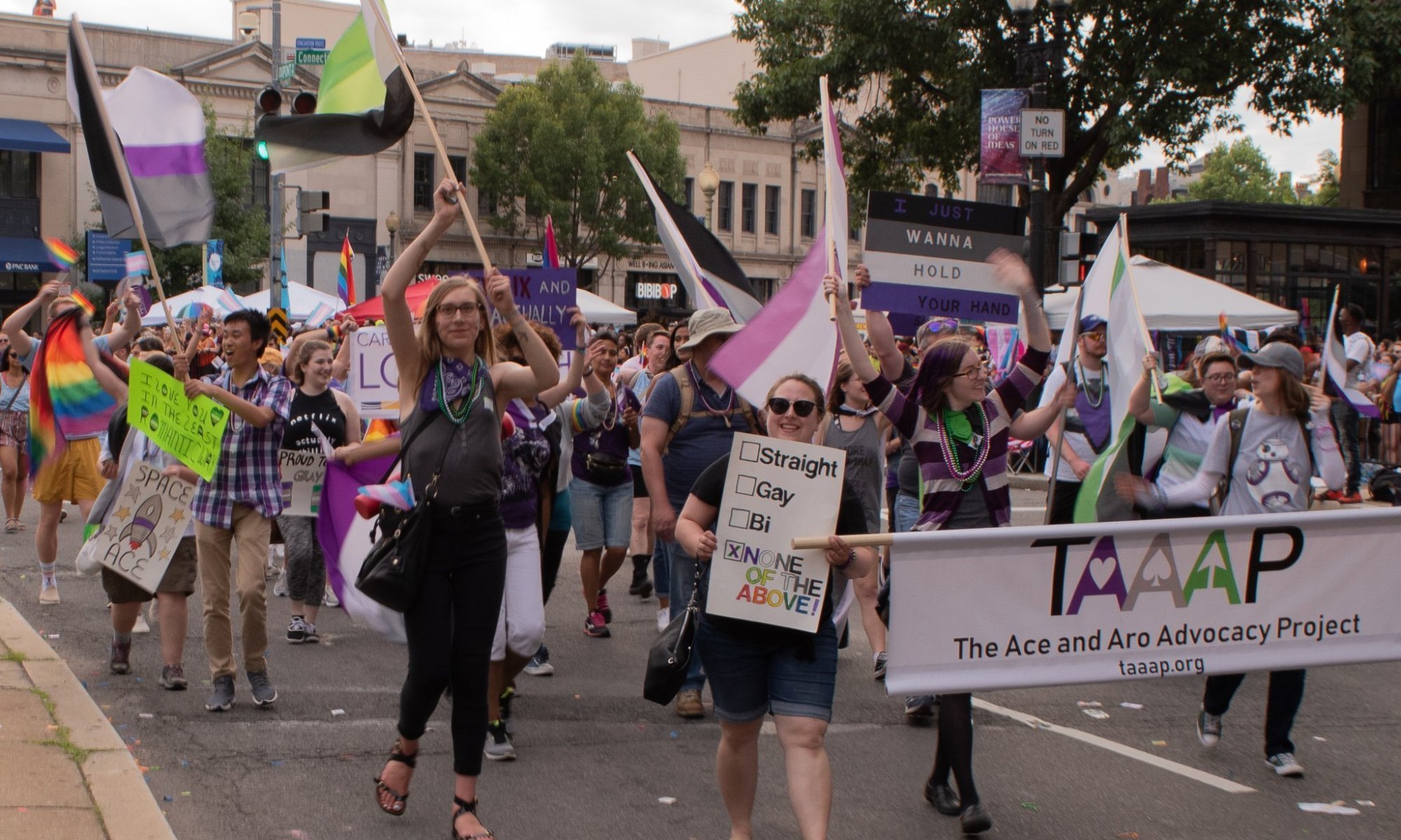 "A group of about 20 people walking down a street holding signs and flags. People at the front of the group are holding a banner with the TAAAP logo and the words ""The Ace and Aro Advocacy Project."""